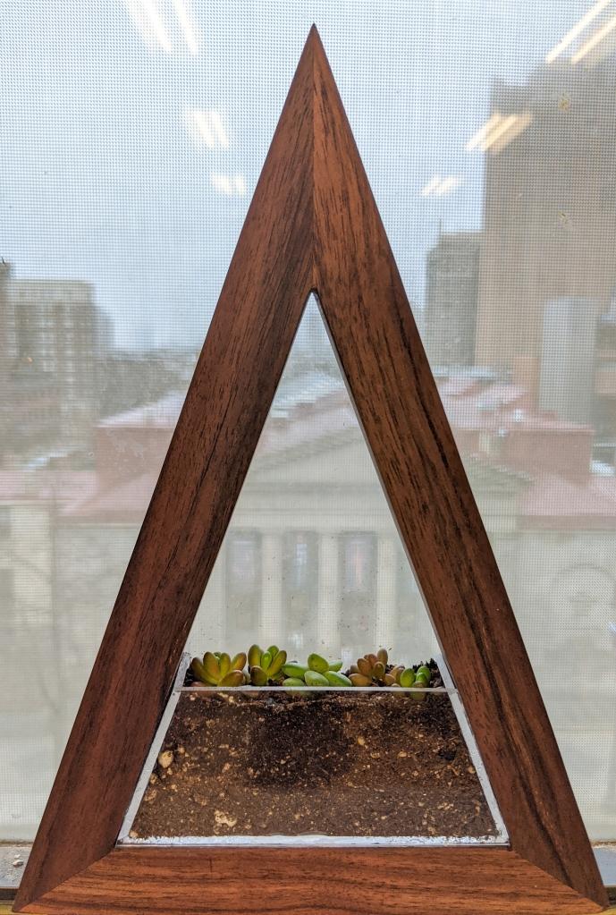 Plant Frame. Walnut frame with removable plexiglass planter.